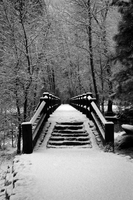 Sentinel Bridge
