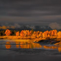 Oxbow Bend fall colors during storm
