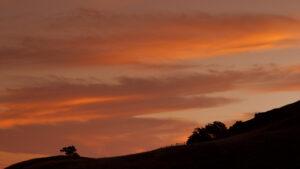 Mt Tamalpais California