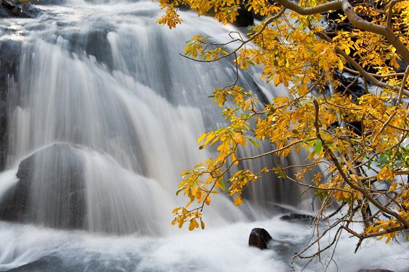 Lundy Creek Eastern Sierra California