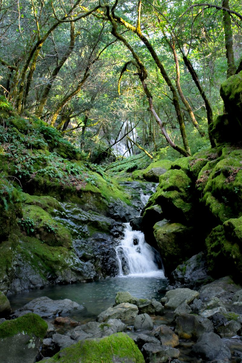 Cataract Falls - Mt Tamalpais - Marin County California
